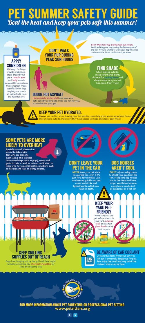 NAPPS-15-SummerSafety-Infographic