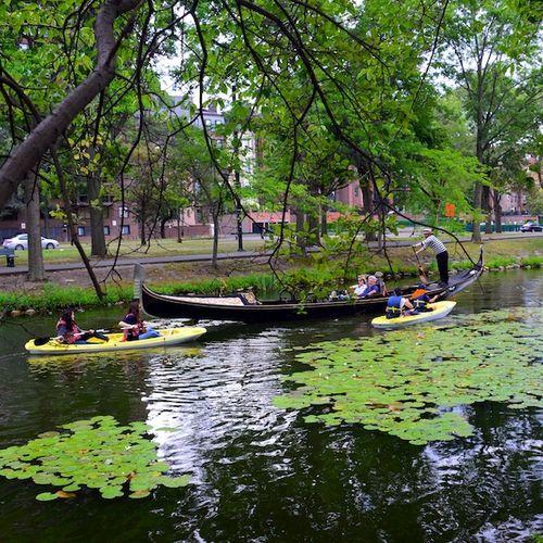 CHE_8505 - Version 22015-08-09-Esplande-canoeway-kayaks-gondolia-storrow-drive-© 2014 Penny Cherubino