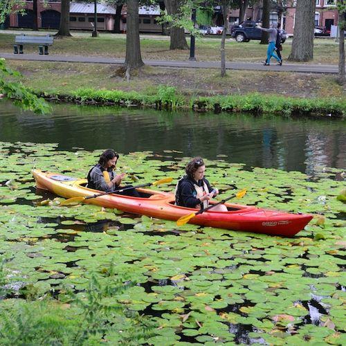 CHE_8478 - Version 22015-08-09-Esplande-canoeway-kayak- storrow-drive-© 2014 Penny Cherubino