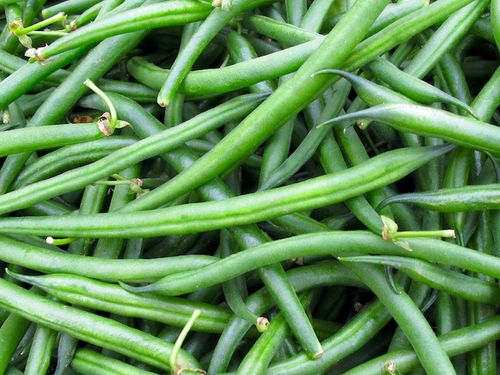 IMG_8413 - Version 22015-07-07-string-beans-fresh-local-© 2014 Penny Cherubino
