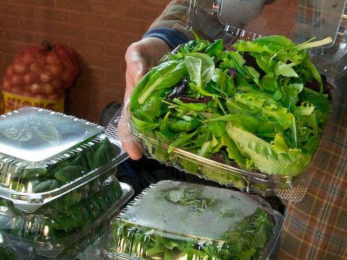20110123-134038-market-scene-Somerville-MA-Greens-greenhouse