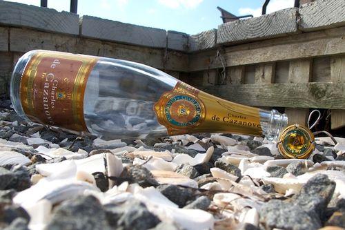 IMG_8578 - Version 22015-10-04Charles-de cazanove-rose-champagne-© 2014 Penny Cherubino