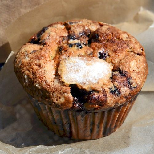 CHE_0009 - Version 22016-03-27Jordan-marsh-blueberry-muffin-wholy-grain-Boston© 2014 Penny Cherubino