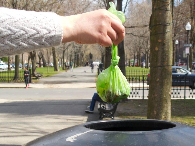 IMG_9567 - Version 22016-03-31City-Paws-proper-waste -disposal-© 2014 Penny Cherubino